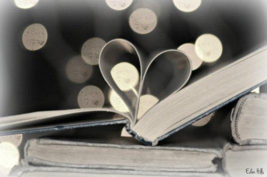 book bokeh_9704ews