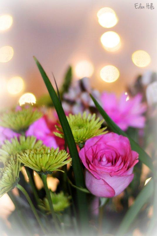 Bouquet bokeh_9845ews