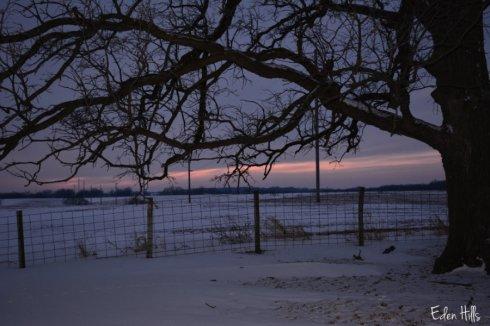 dusk sky_0477ws