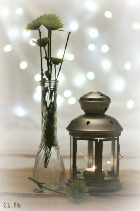 flower lamp_9918ews
