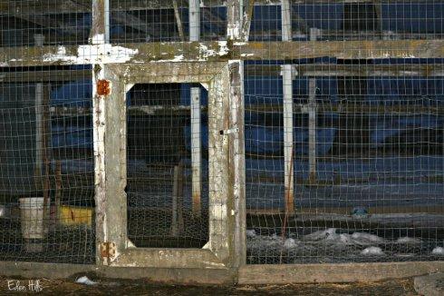 gate_0708ews