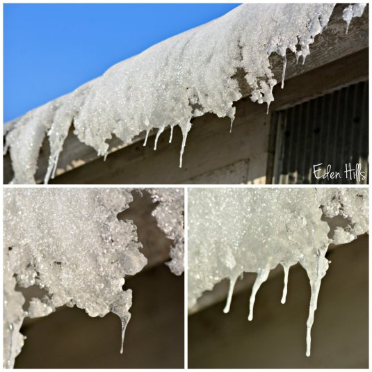 Icicle collage ew