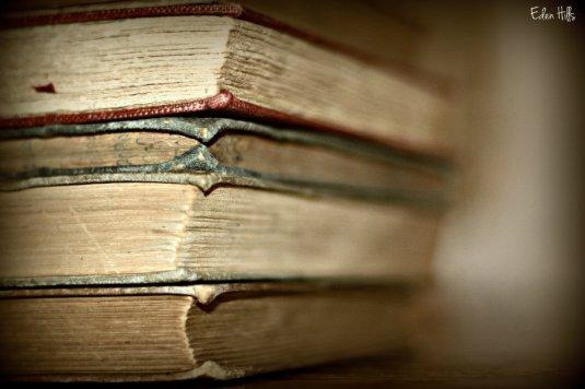 old books_9744ews