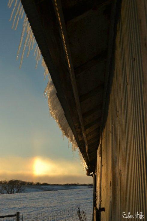 sundog icicle_0038ews