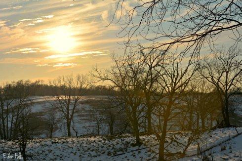 sunny sky_0225ews