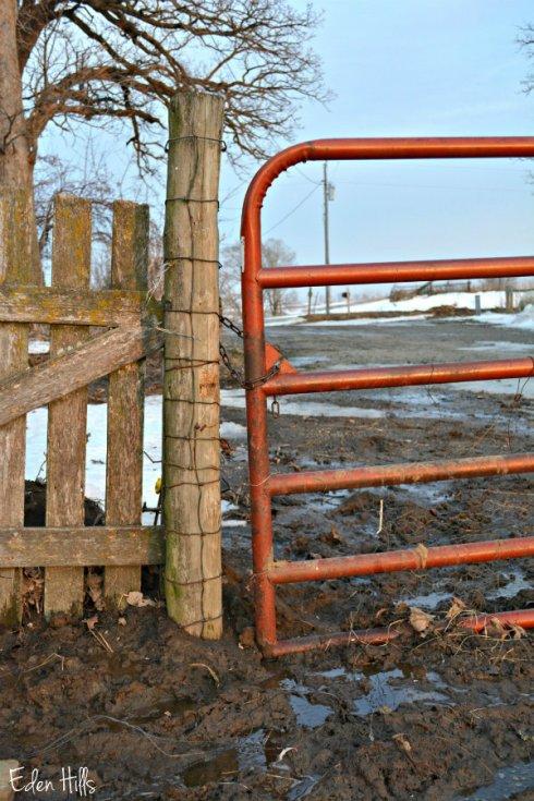 Gate_1797ews
