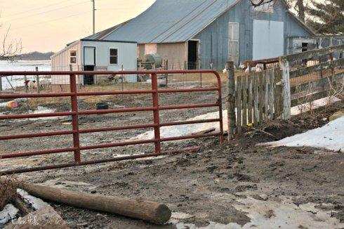 gate_1842ews