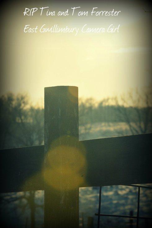 RIP fence 142e