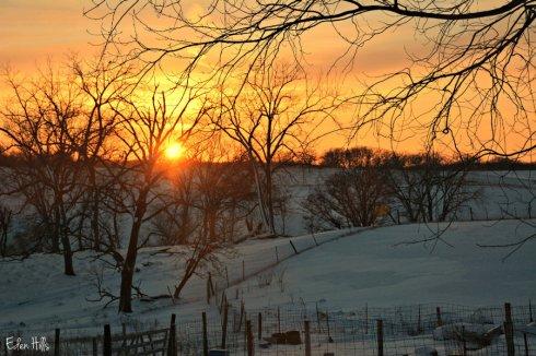 sunset_1033ews