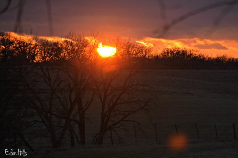 Sunset_2574ews