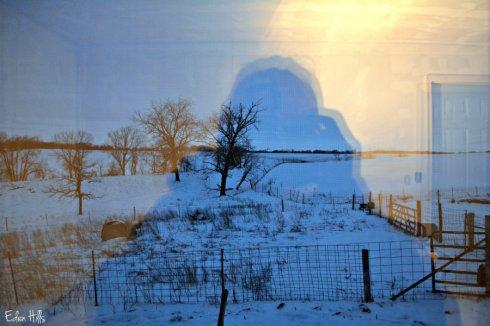window reflection_1696ews