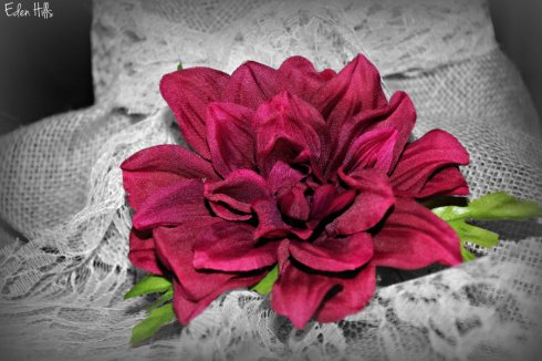 flower_3744e2ws