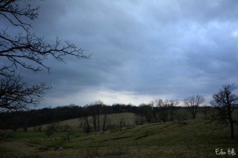 Gray skies_4191ews