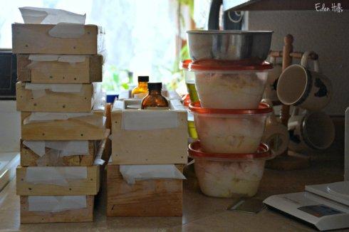soap making_2877ews