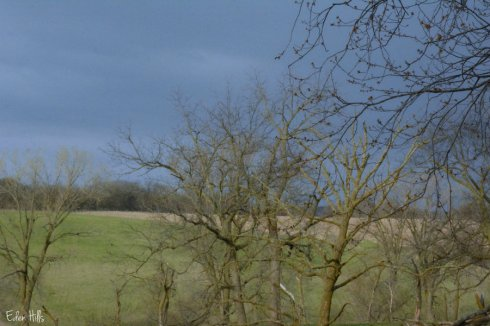 Clouds_4862ews