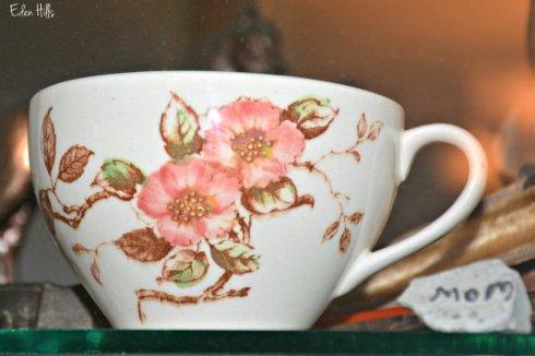 cup_5237ews