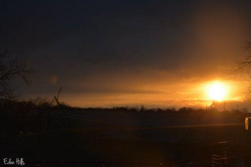 Sunset_4230ws