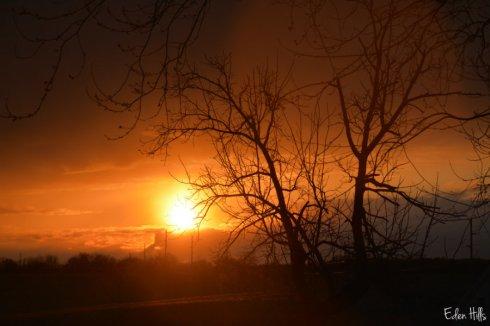 Sunset_4237ws