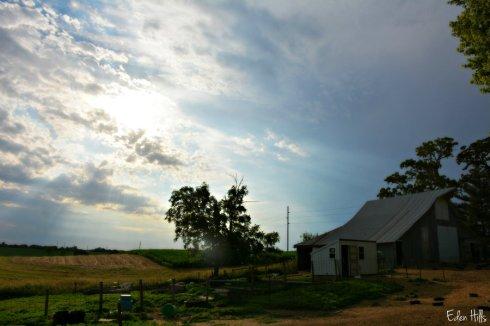 rain barn_9683ews