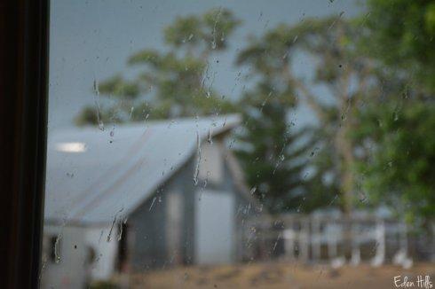 rain_0898ws