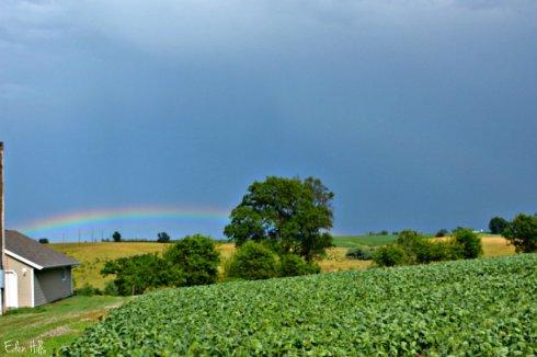 rainbow_0919ews