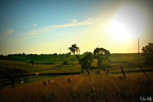 Sunset_9736ews