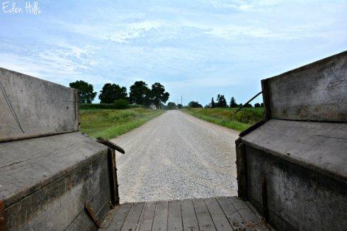 Gravel Road_2785ews