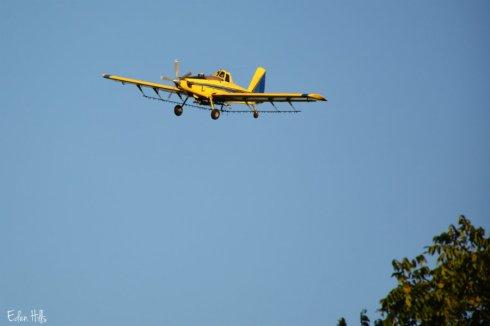 plane_2953ews