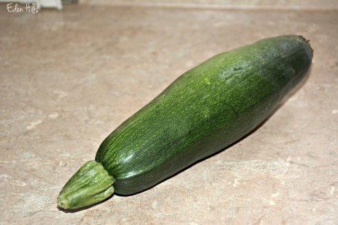 Zucchini_1106ews