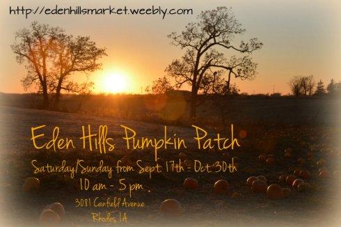 pumpkin sunset_7272e ad w