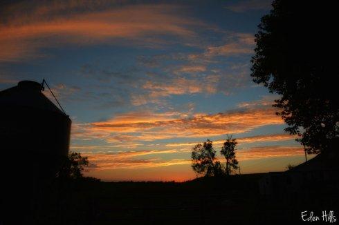 sunset_5349ews