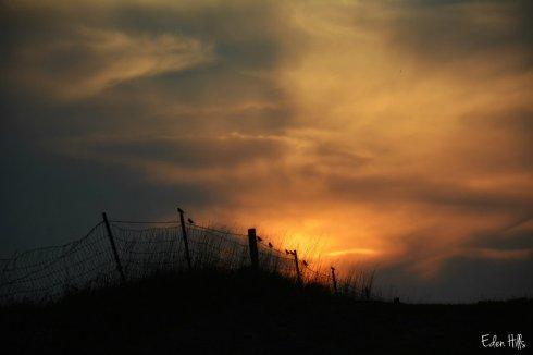 sunset_5671ews