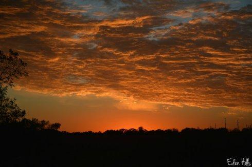 sunset_5833ews