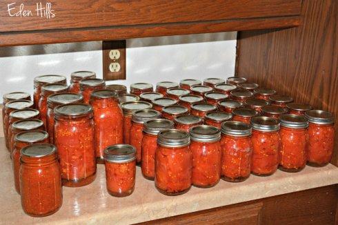 tomatoes_5097ews