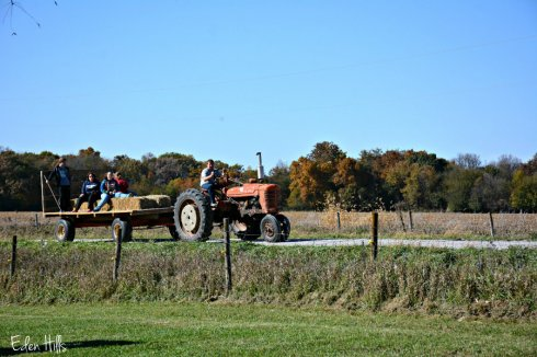 hay-rack-ride_6709ews