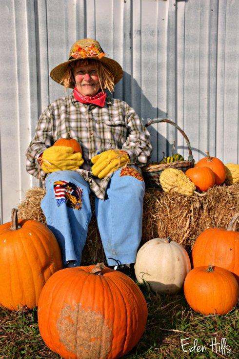 living-scarecrow_7123ews