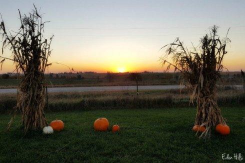 sunrise-ews