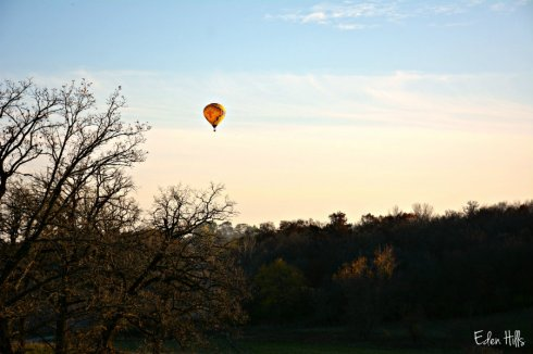 balloon_7441ews