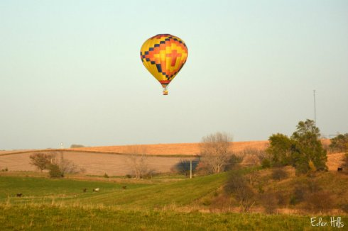 balloon_7497ews