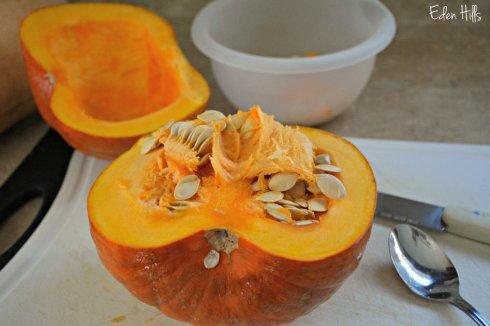 pumpkin_7883ews