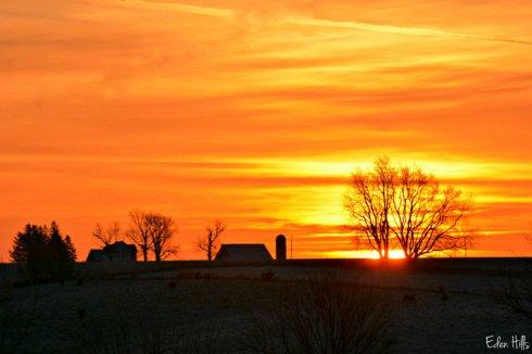 sunrise_7995ews