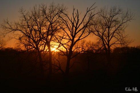 sunsetws_7646