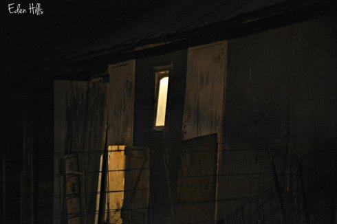 night-barn_8364ews