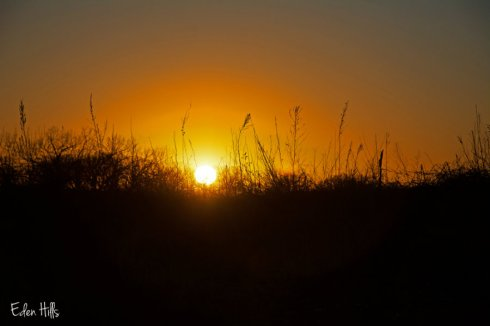 sunset_1510ews
